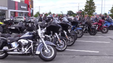 Motorcycles in parking lot