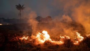 A fire burns a field on a farm in the Nova Santa Helena municipality, in the state of Mato Grosso, Brazil, Friday, Aug. 23, 2019. (AP Photo/Leo Correa)