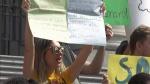 Vancouverites rally for Amazon rainforest