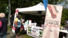 Passionate volunteers held a stem cell drive at the Steveston Dragon Boat Festival in Richmond on Saturday to try and help. (CTV)