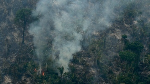 Fire consumes an area near Jaci Parana, state of Rondonia, Brazil, Saturday, Aug. 24, 2019. (AP Photo/Eraldo Peres)