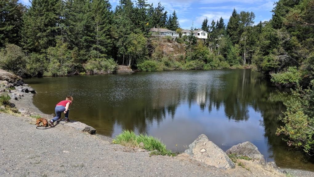 Lookout Lake