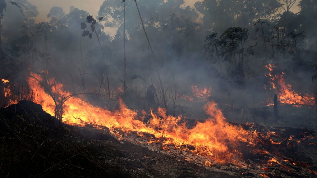 Fires burn in Brazil's Amazon rainforest