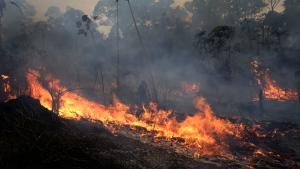 A fire burns along the road to Jacunda National Forest, near the city of Porto Velho in the Vila Nova Samuel region which is part of Brazil's Amazon, Monday, Aug. 26, 2019. (AP Photo/Eraldo Peres)
