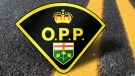 Ontario Provincial Police in Wasaga Beach have arrested a homeless woman in connection with the death of her infant son in April. (File)