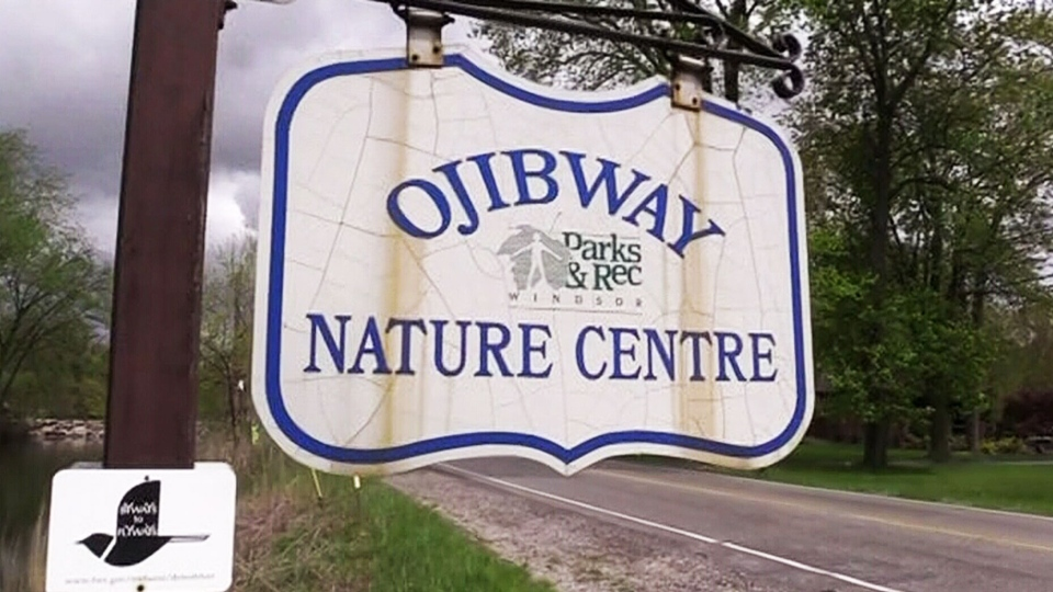 Windsor council reviews closing roads near Ojibway