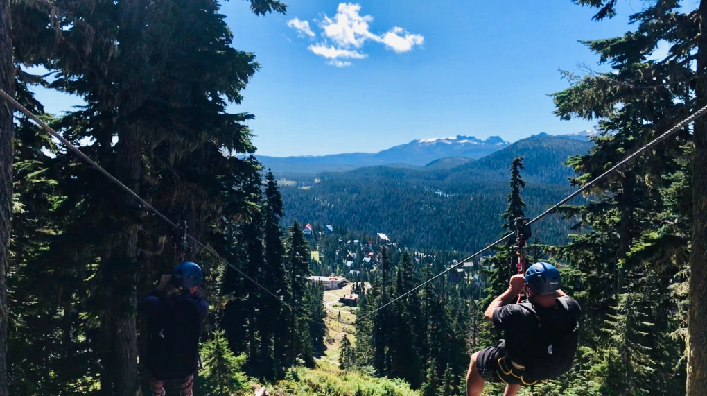 Mt Washington Zipline