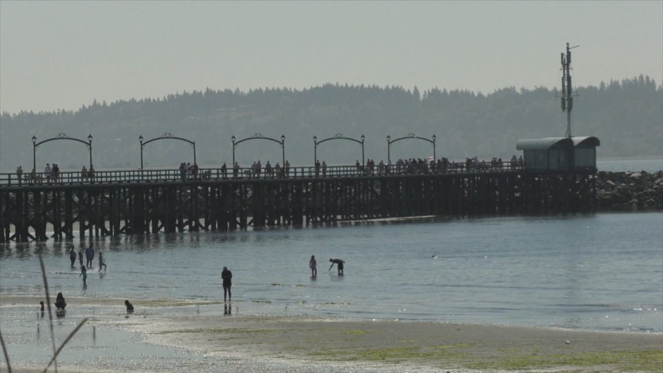The White Rock Pier is seen in this file photo.