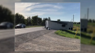 OPP say a man fled the scene of a reported collision that resulted in a camper trailer being flipped over.  (Photo: Spencer Turcotte/CTV Kitchener) (August 30, 2019)