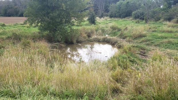pond roll over Haldimand County