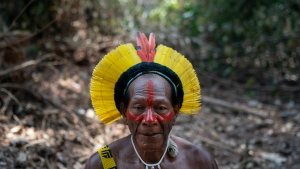 Krimej village indigenous Chief Kadjyre Kayapo, of the Kayapo indigenous community, poses for a photo on the path opened by illegal loggers on the border between Menkragnotire indigenous lands and the Biological Reserve Serra do Cachimbo in Altamira, Para state, Brazil, Saturday, Aug. 31, 2019. Much of the deforestation in the Brazilian Amazon is done illegally -- land grabbers burn areas to clear land for agriculture and loggers encroach on national forests and indigenous reserves, and Kayapo says he does not want loggers and prospectors on his land. (AP Photo/Leo Correa)