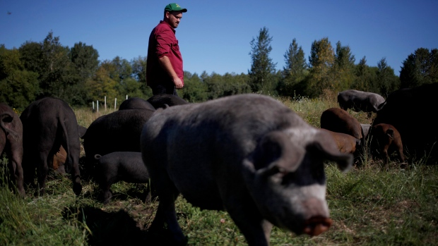 Lentelus Farms