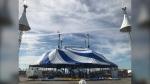 Cirque du Soleil's touring show Amaluna gets underway in Winnipeg Sept. 14. See how the crew is getting the big top tent set up. (Photos: CTV News Winnipeg)