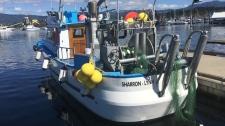 Sharron Lynn port alberni boat