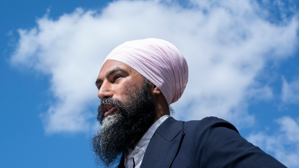 NDP ended 2018 with nearly $4.5 million in negative net assets, return shows