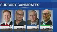 A look at the major federal party candidates to ru