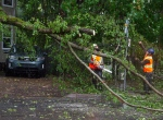 Workers remove a fallen tree blocking a road in Dartmouth, N.S. as hurricane Dorian approaches on Saturday, Sept. 7, 2019. THE CANADIAN PRESS/Andrew Vaughan