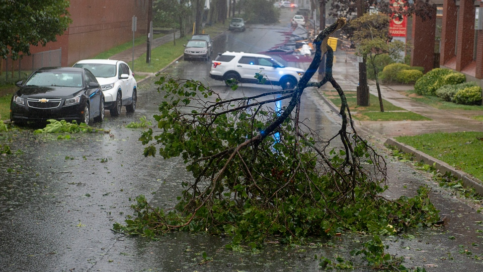 Tree branches block a street in Halifax as hurricane Dorian approaches on Saturday, Sept. 7, 2019. THE CANADIAN PRESS/Andrew Vaughan