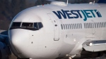A pilot taxis a Westjet Boeing 737-700 plane to a gate after arriving at Vancouver International Airport in Richmond, B.C., on Monday, Feb. 3, 2014. THE CANADIAN PRESS/Darryl Dyck
