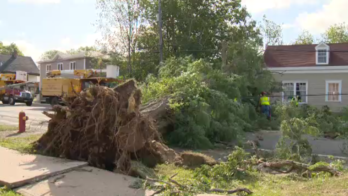 The sound of chainsaws could be heard across Shelburne County on Sunday morning as crews worked to clear the damage Hurricane Dorian left in its tracks.