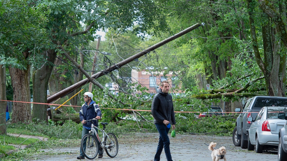 A street is blocked by fallen trees in Halifax on Sunday, Sept. 8, 2019. THE CANADIAN PRESS/Andrew Vaughan