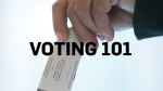 What you need to know to cast your ballot