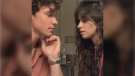 After months of teasing a relationship, Shawn Mendes and Camila Cabello kissed on Instagram for their followers and it was quite a display. (Instagram/shawnmendes)