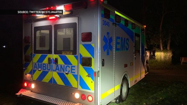 Stanley Park, Elbow River, rescue