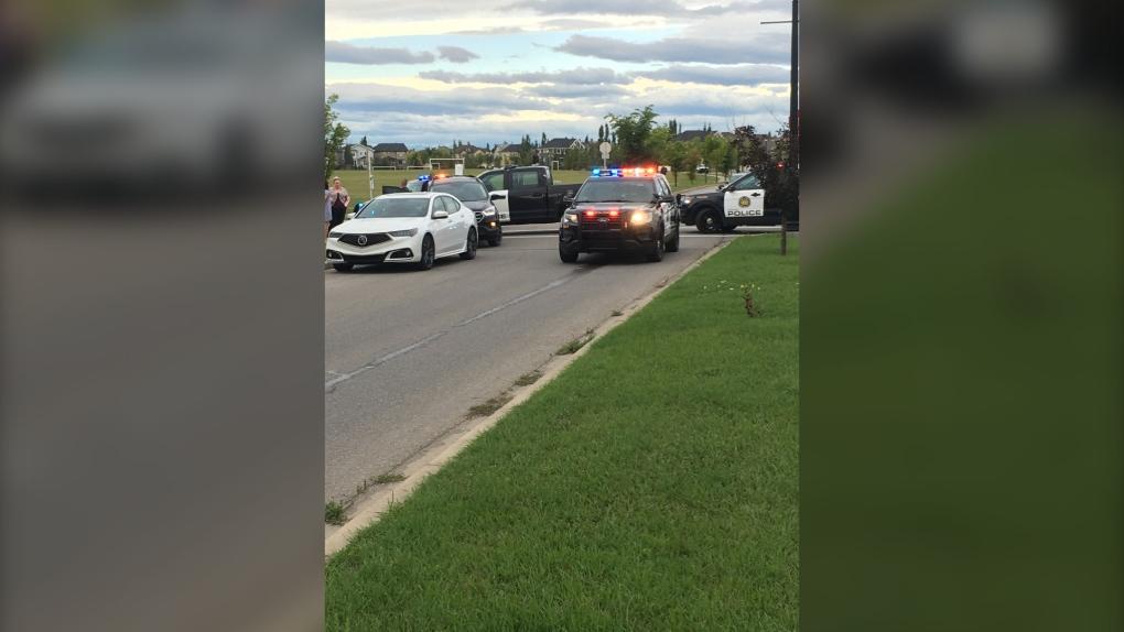 Police investigate collision involving pedestrian in city's southeast