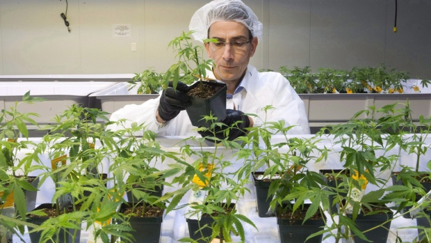 Aurora Cannabis facility in Montreal