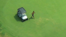 Man chased by police hijacks golf cart