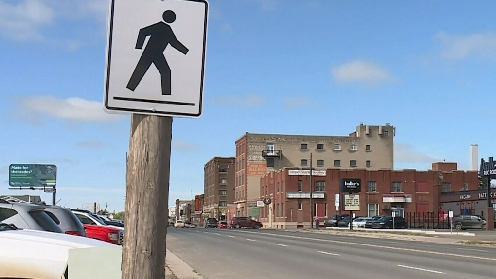 Businesses speak out on new pedestrian crossing signs along Dewdney Ave.