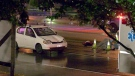 A pedestrian was struck and killed in the Newton area of Surrey Saturday night. (CTV)