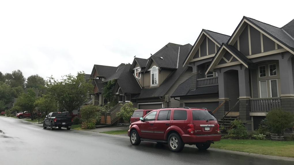Officer assaulted at 'out of control house party' in Pitt Meadows: RCMP
