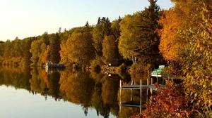 Autumn approaching in Kerr Lake. Photo by Lesley Skibinsky.