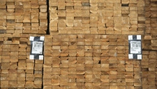 Fresh cut lumber is pictured stacked at a mill along the Stave River in Maple Ridge, B.C. Thursday, April 25, 2019. (THE CANADIAN PRESS/Jonathan Hayward)