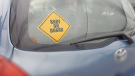Generic image of  a Baby on Board sign on a vehicle. (Graphics/Steve Wishart/CTV News)