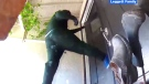 Would-be burglars captured kicking in front door