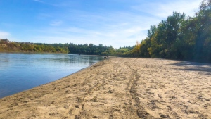 A sandbar known as Accidental Beach in Edmonton's North Saskatchewan River was revealed once again after being submerged for much of the summer. (Twitter/@TimAdamsFF)