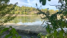 A sandbar known as Accidental Beach in Edmonton's North Saskatchewan River has been revealed once again after it was  submerged for much of the summer. (Twitter/@TimAdamsFF)
