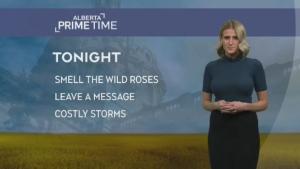 Alberta Primetime Sept 16, 2019