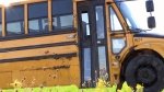 Student recounts school bus roll-over