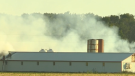 Firefighters battle a fire at a barn near Tavistock that houses pigs. (CTV Kitchener)