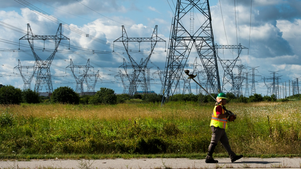 Elizabeth May wants a fully renewable electricity grid by 2030. Is that possible?