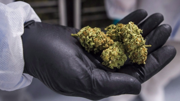 CannTrust says Health Canada has suspended its licence