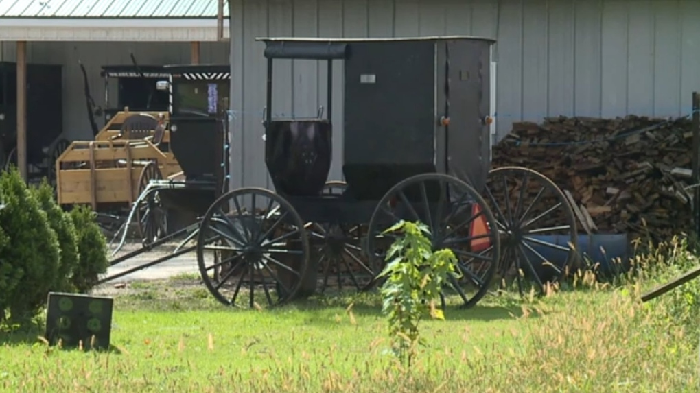 Amish men escaped after being pulled over for drinking and driving a horse and buggy: police
