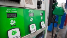 A fuel pump is pictured at a gas station in Vancouver, Wednesday, July 17, 2019. THE CANADIAN PRESS/Jonathan Hayward