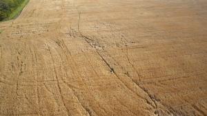 Farmer's field, meteorite search
