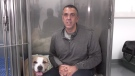 A homeless veteran is pleading for help after being involved in a serious car accident along with his dog, Rocky. (CTV)