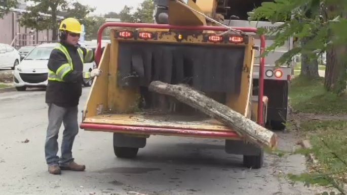 City crews in Halifax use a wood chipper to clear downed trees and branches left behind by post-tropical storm Dorian.